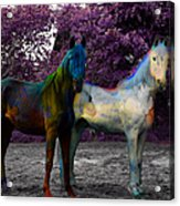 Coats Of Many Colors Acrylic Print