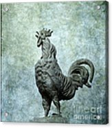 Cock Acrylic Print by Bernard Jaubert