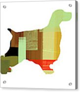 Cocker Spaniel 1 Acrylic Print