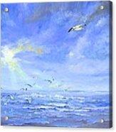 Cocoa Beach Birds Acrylic Print