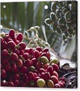Cocos Nucifera - Niu Mikihilina - Palma - Niu - Arecaceae -  Palmae Acrylic Print
