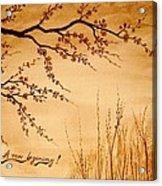 Coffee Painting Cherry Blossoms Acrylic Print by Georgeta  Blanaru