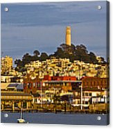 Coit Tower Golden Hour Acrylic Print