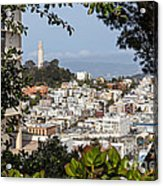 Coit Tower View Acrylic Print