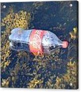 Coke Among The Seaweed Acrylic Print