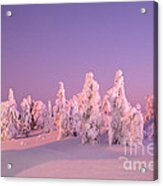 Cold And Colourful Sunset Acrylic Print