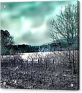 Cold Breezes Acrylic Print