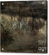 Cold Reflection 2 Acrylic Print
