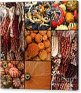 Collage - Corn - Pumpkins - Gourds - Elena Yakubovich Acrylic Print