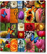 Collage Of Happiness  Acrylic Print