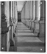 Colonnade Acrylic Print