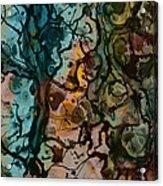 Color Abstraction Xvi Acrylic Print by David Gordon