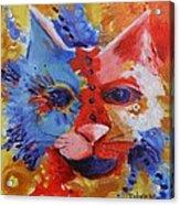 Color Cat Acrylic Print