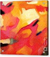 Color Dynamics Acrylic Print