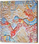 Color Hieroglyph Acrylic Print