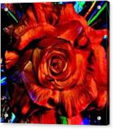 Color Intensive Rose Acrylic Print