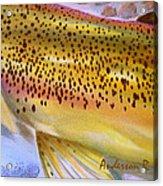 Color Me Trout- Brown Acrylic Print