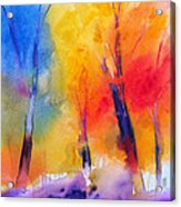 Color symphony of the wodd Acrylic Print