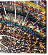 Color Wheel Acrylic Print