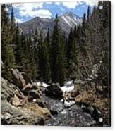 Colorado Wild Acrylic Print