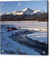 Colorado 14er Mt. Elbert Acrylic Print