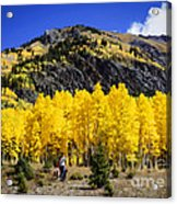 Colorado Autumn Hike Acrylic Print