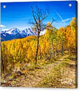 Colorado Backcountry Autumn View Acrylic Print