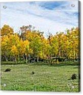 Colorado Fall Panorama Acrylic Print by Baywest Imaging