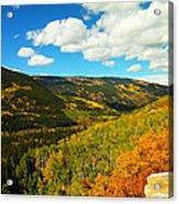 Colorado In Autumn Acrylic Print
