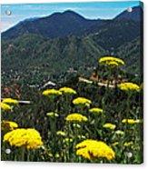 Colorado Rocky Mountain Acrylic Print
