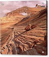 Colorado Plateau Sandstone Arizona Acrylic Print