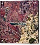 Colorado River In Grand Canyon Acrylic Print