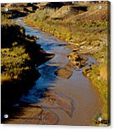 Colorado River View Acrylic Print by Eva Kato