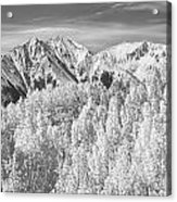 Colorado Rocky Mountain Autumn Beauty Bw Acrylic Print