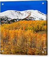 Colorado Rocky Mountain Independence Pass Autumn Pano 2 Acrylic Print