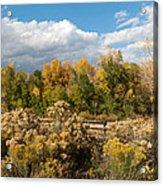Colorado Urban Autumn Landscape Acrylic Print