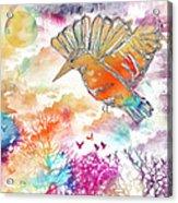 Colored Bird Acrylic Print