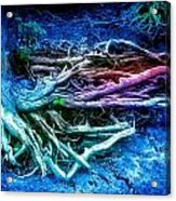 Colored Forest Acrylic Print by John Ressler