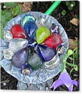 Colored Glass Shells Acrylic Print