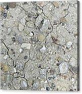 Ground Rocks Acrylic Print