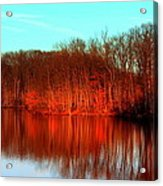 Colorful Afternoon Acrylic Print by Jose Lopez