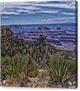 Colorful Canyon Acrylic Print