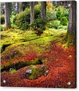 Colorful Carpet Of Moss In Benmore Botanical Garden. Scotland Acrylic Print