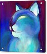 Colorful Cat 3 Acrylic Print