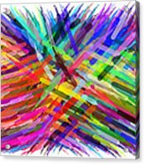 Colorful Cattails Acrylic Print