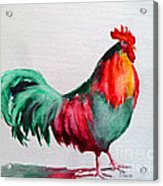 Colorful Chicken Acrylic Print