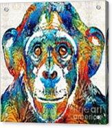 Colorful Chimp Art - Monkey Business - By Sharon Cummings Acrylic Print