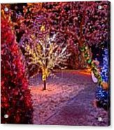 Colorful Christmas Lights On Trees Acrylic Print