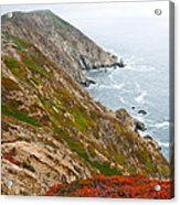 Colorful Cliffs At Point Reyes Acrylic Print