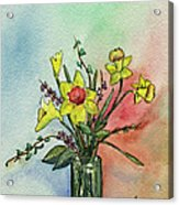 Colorful Daffodil Flowers In A Vase Acrylic Print by Prashant Shah